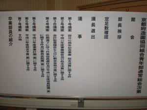 2011_04160002